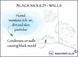 black-mould-sketch