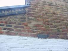 Cement Repointing